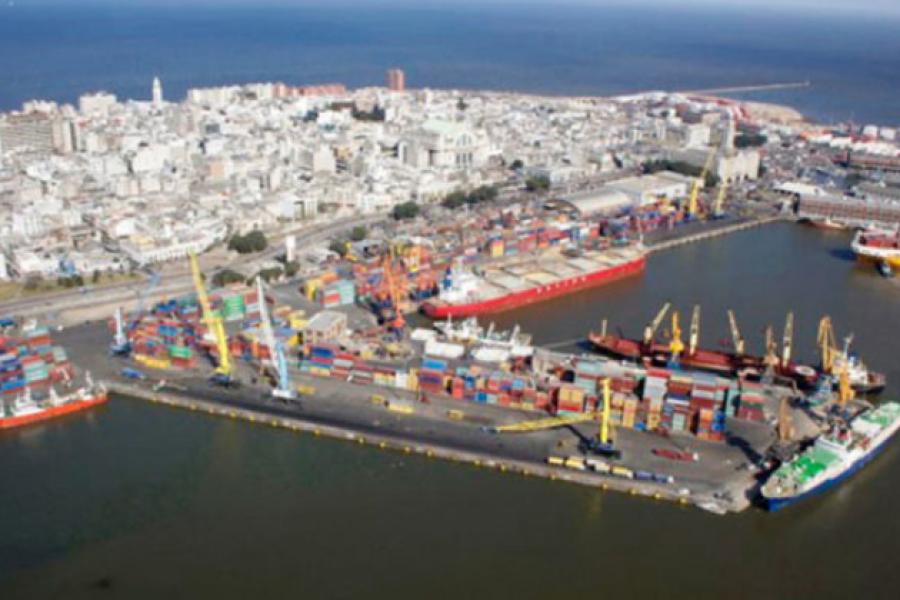 """Seragro: Para exportar, la empresa de alimentos no debe pensar solamente en """"abrir nuevos mercados"""""""