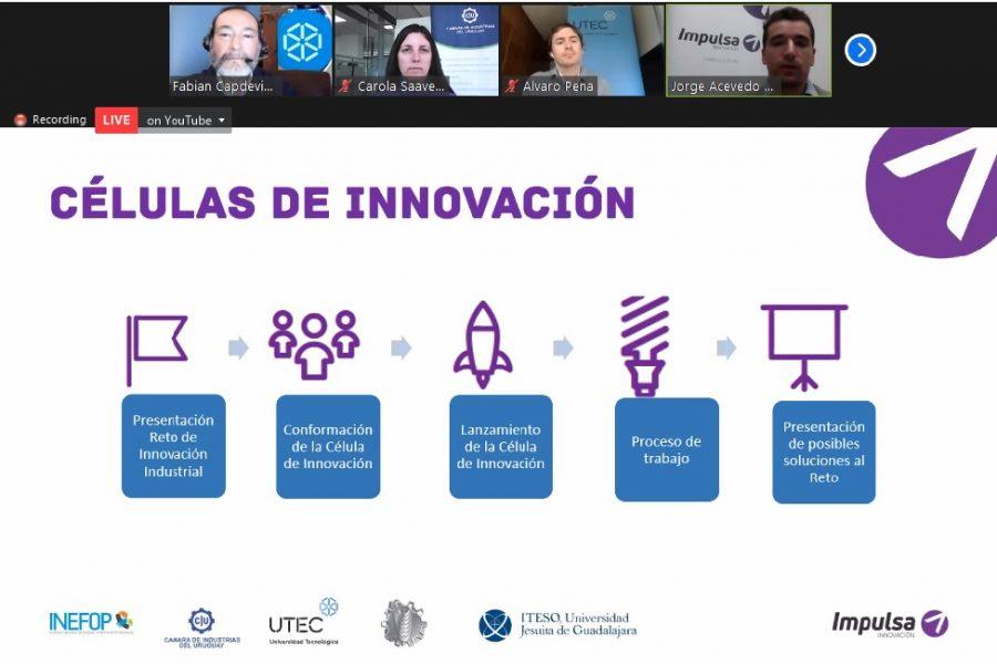 Se presentaron las Células de Innovación en UTECenRed